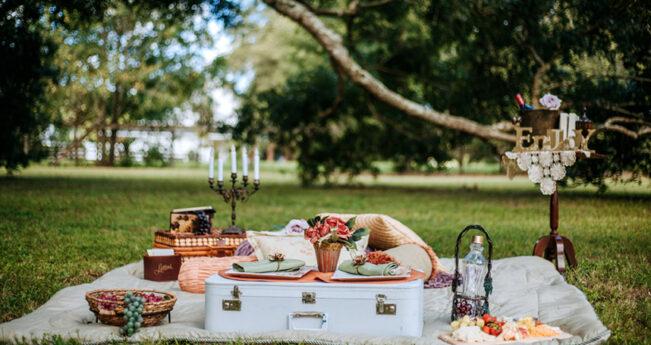 A private romantic picnic in the park.