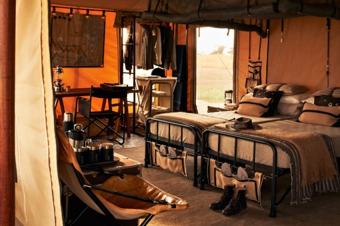 Luxurious Properties on Safari